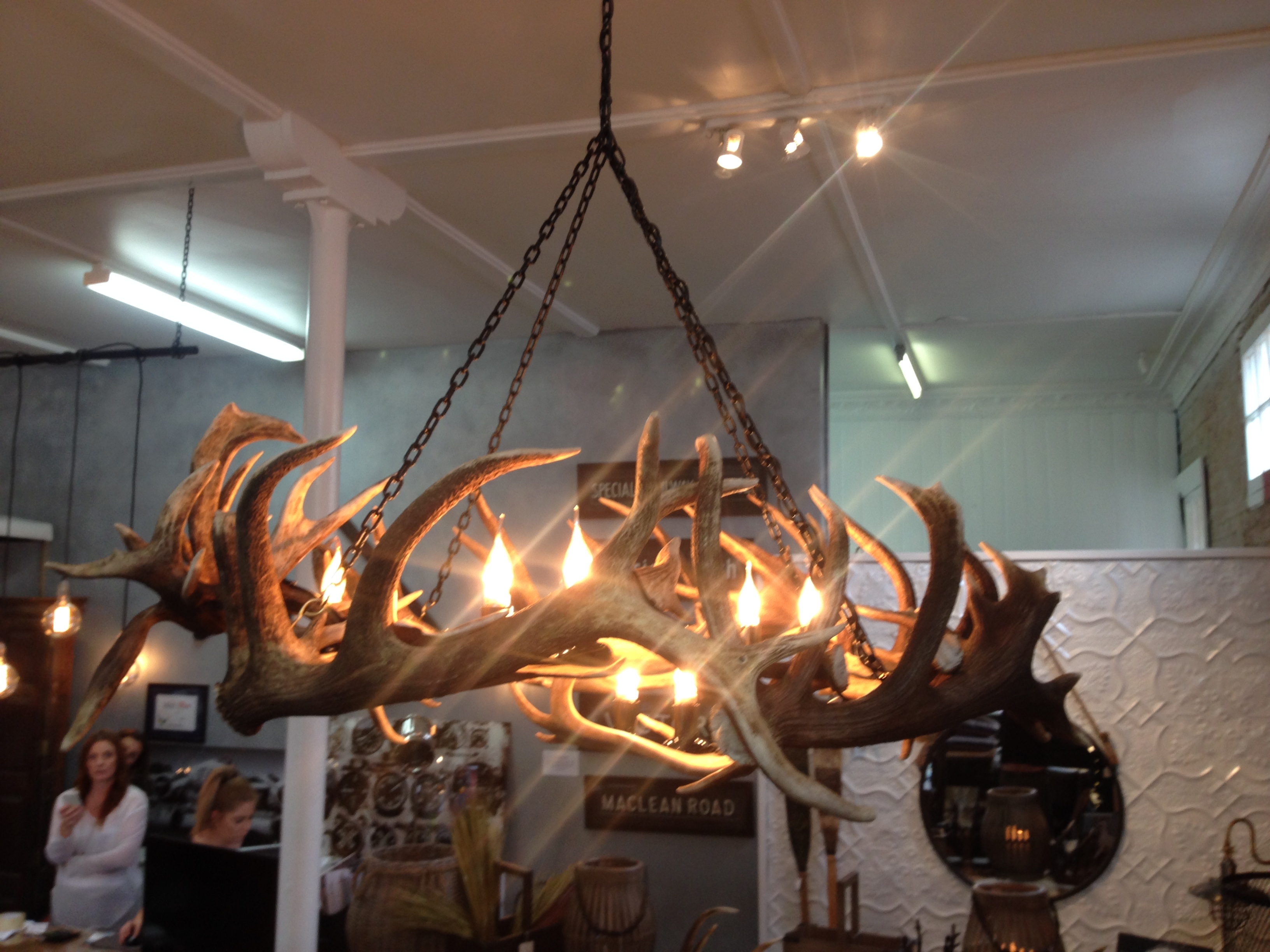 product large designs horn whitetail chandelier deer real cast antler